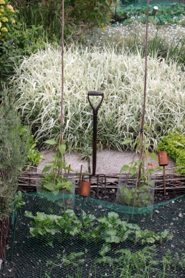 Some Things You Don 39 T Need To Do In A Fall Garden